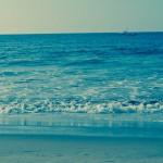 Photo Diary: Punta Sal