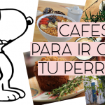 "5 Cafés  ""Petfriendly"" en Lima"