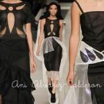 Ani Alvarez-Calderón FW 2013: Trends
